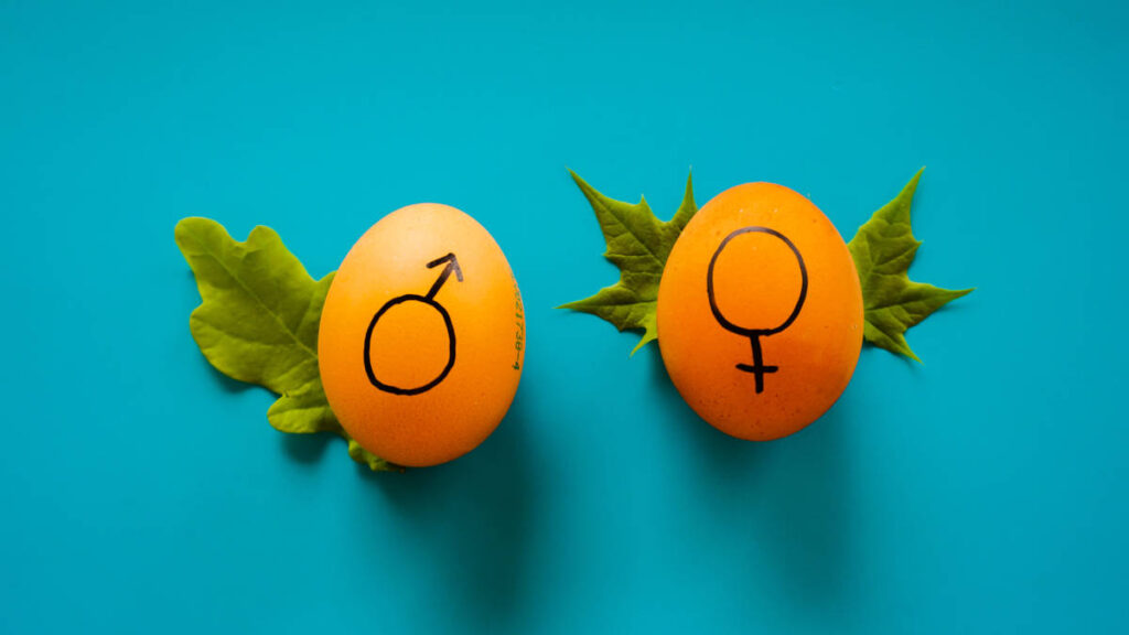 aumentar la testosterona y el libido